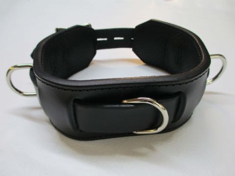 Triple Dee Locking Leather/Leather Lined Play Collar